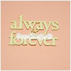 Kartoninė formelė ALWAYS & FOREVER, 1 vnt.