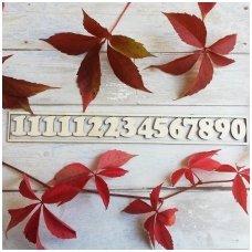 Medinių skaitmenų laikrodžiui rinkinys