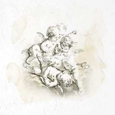 Mini ryžinio popieriaus rinkinys, 6 lapeliai 4
