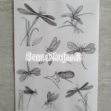 Permatomas pergamentinis popierius LAUMŽIRGIAI