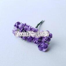 Popierinės rožytės, šviesi violetinė sp., 12 žiedų