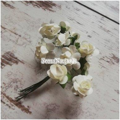 Popierinės rožytės (dramblio kaulo sp.)