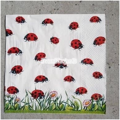 Popierinių servetėlių rinkinys (smulkūs motyvai) 6