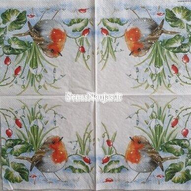 Popierinių servetėlių rinkinys su paukščių motyvais 7