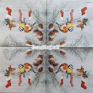 Popierinių servetėlių rinkinys su paukščių motyvais 8