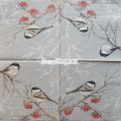 Popierinių servetėlių rinkinys su paukščių motyvais 9