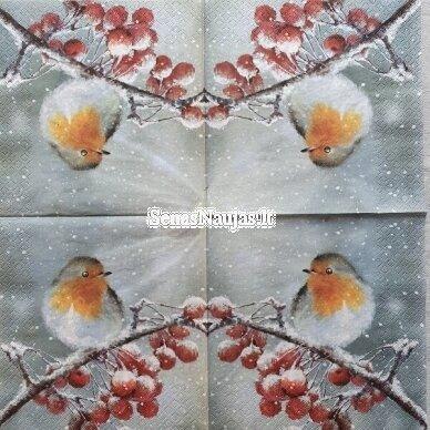 Popierinių servetėlių rinkinys su paukščių motyvais 10