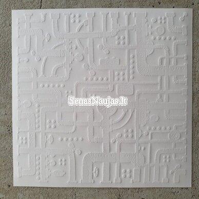 Reljefinio popieriaus rinkinys 6