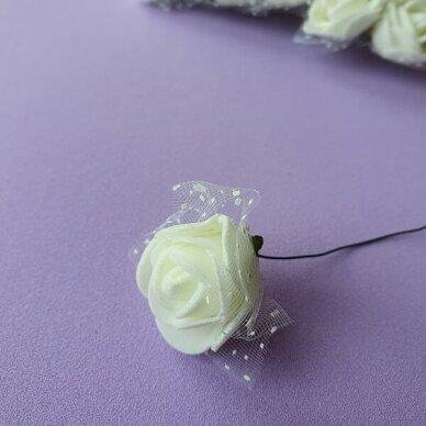 Rožytės su tiuliu, kreminė sp., 12 žiedų 2