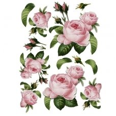 Ryžinė servetėlė